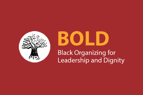Black Organizing for Leadership and Dignity